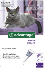 advantage flea large cat