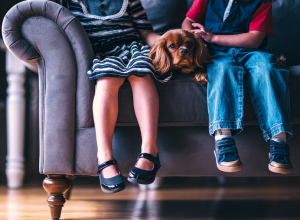 dog on couch with kids