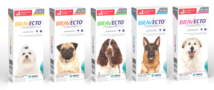 bravecto for dogs in five sizes