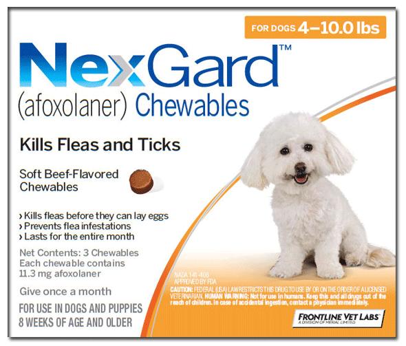 Nexgard für kleine Hunde